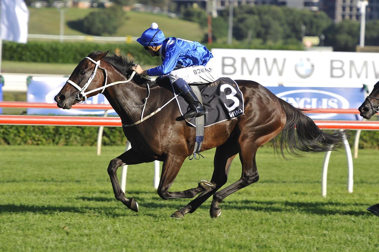 Winx Crowned Australian Horse Of The Year « Breeding Racing